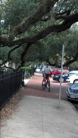 biking.live.oaks2